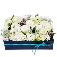 꽃상자 p518